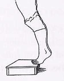 Protocole de Stanish : exercice de montée de marche en appui sur les deux pieds