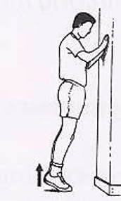 Protocole de Stanish : exercice debout